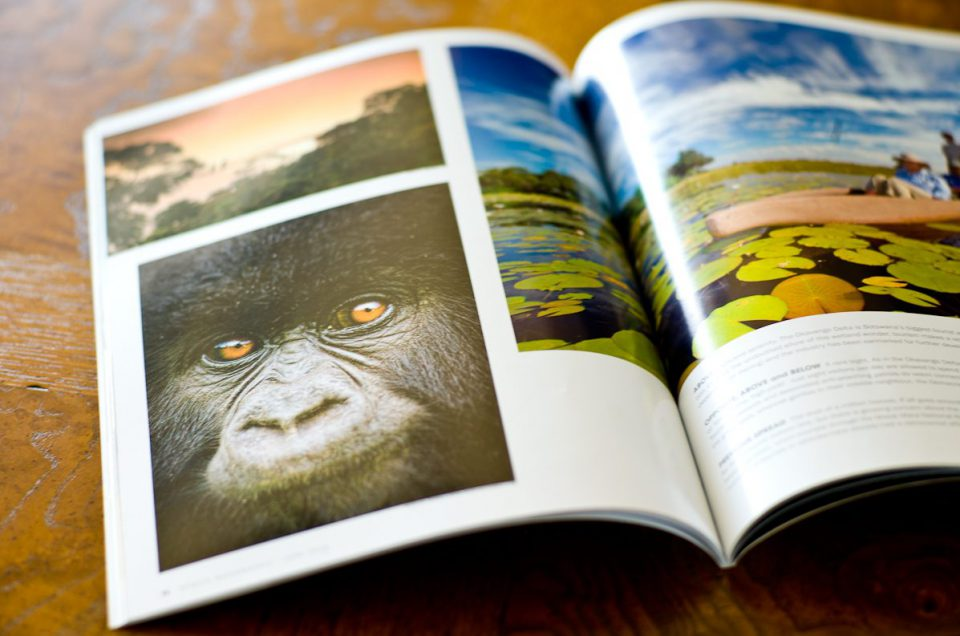 June Africa Geographic