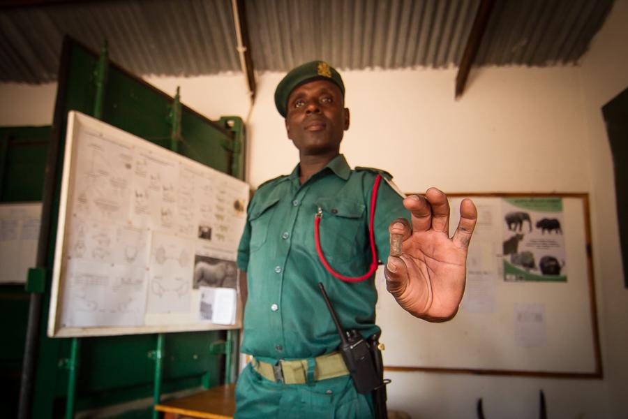 Tizola Moyo holds a poacher's bullet