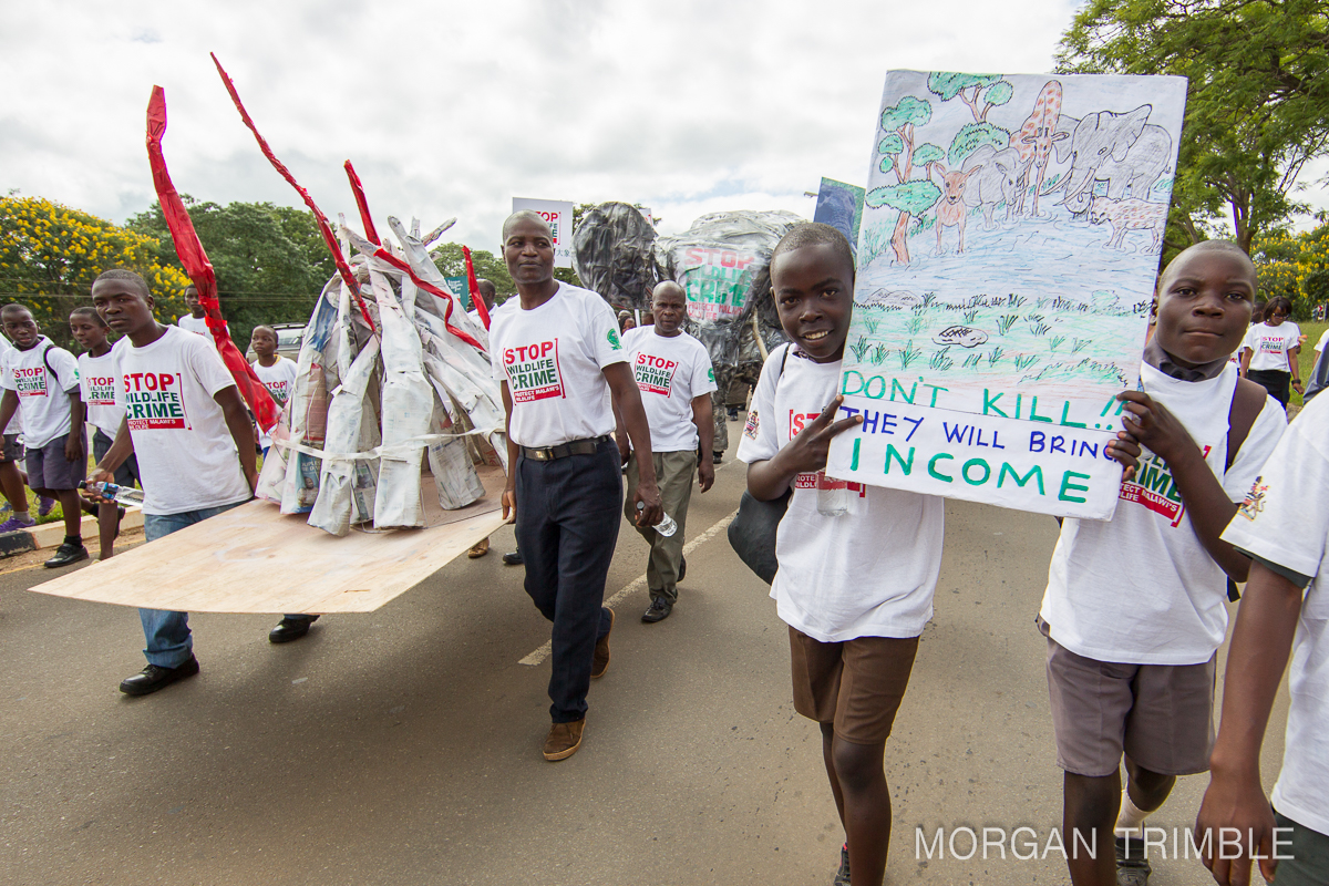 Malawi World Wildlife Parade