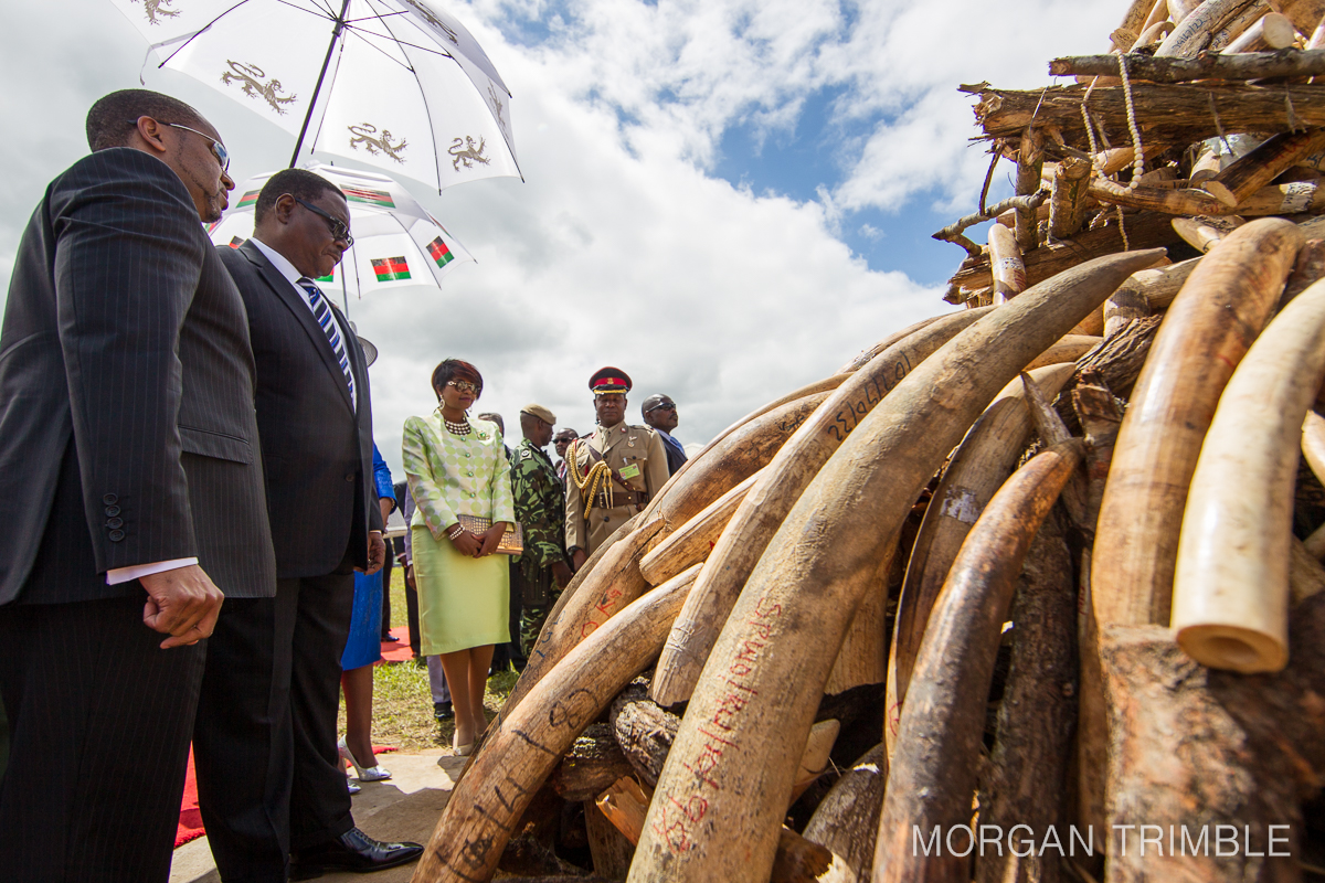 President Mutharika at ivory burn