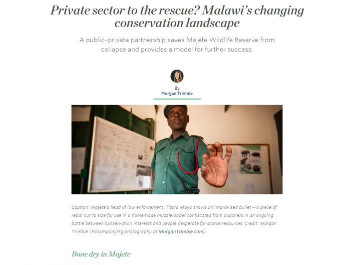 Private sector to the rescue? Malawi's changing conservation landscape