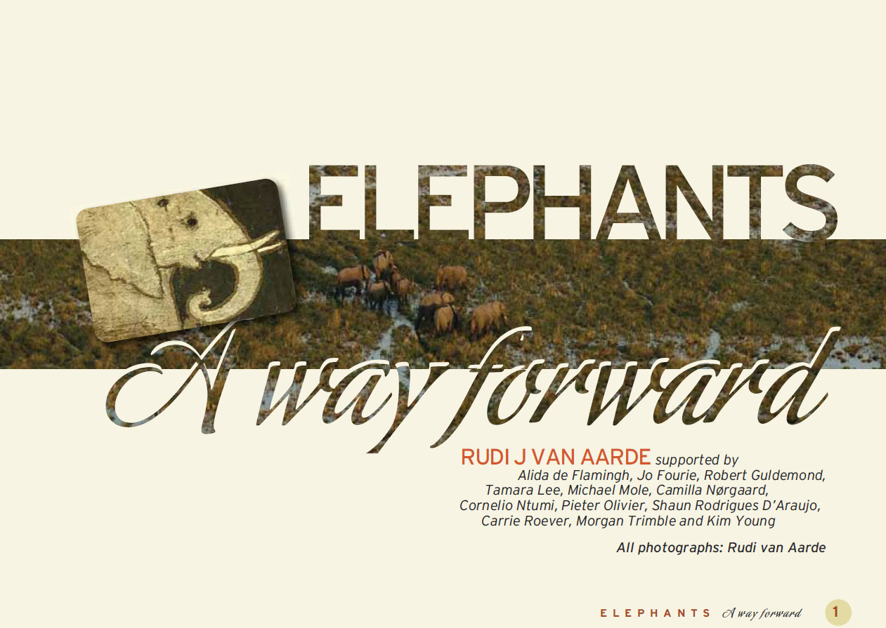 Elephants: a way forward