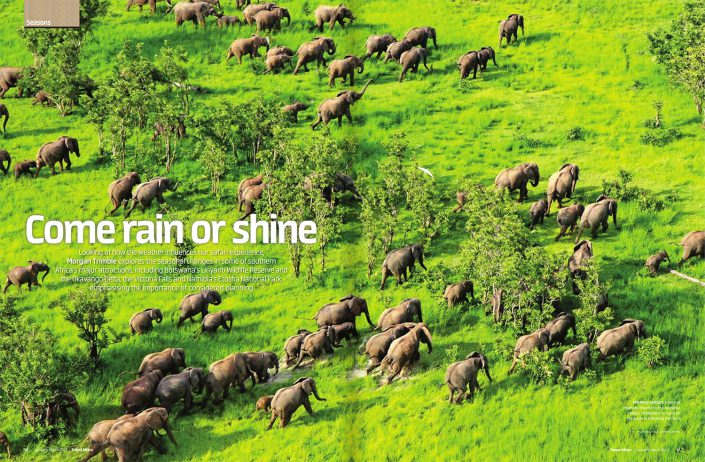 Come Rain or Shine: The Seasons of Southern Africa