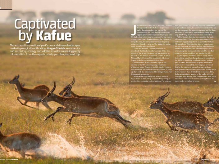 Captivated by Kafue