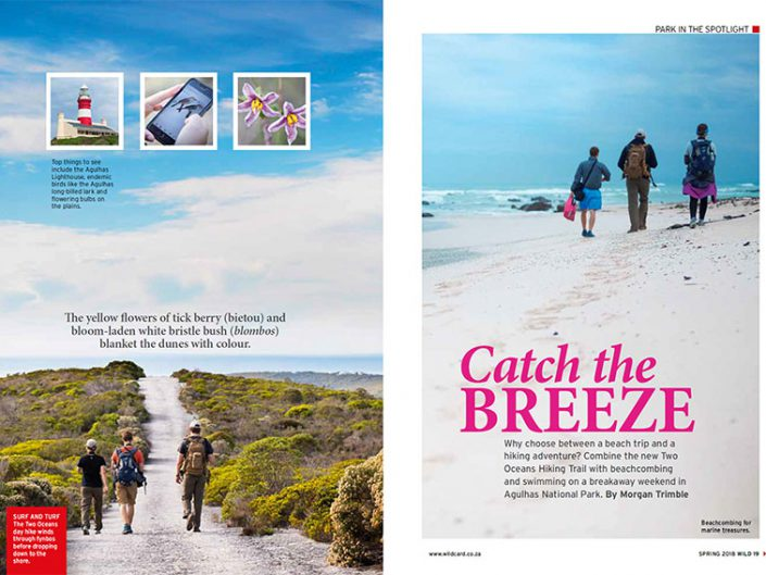 Catch the Breeze in Agulhas National Park