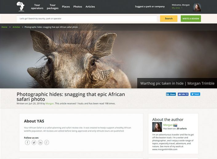 Photographic hides: snagging that epic African safari photo
