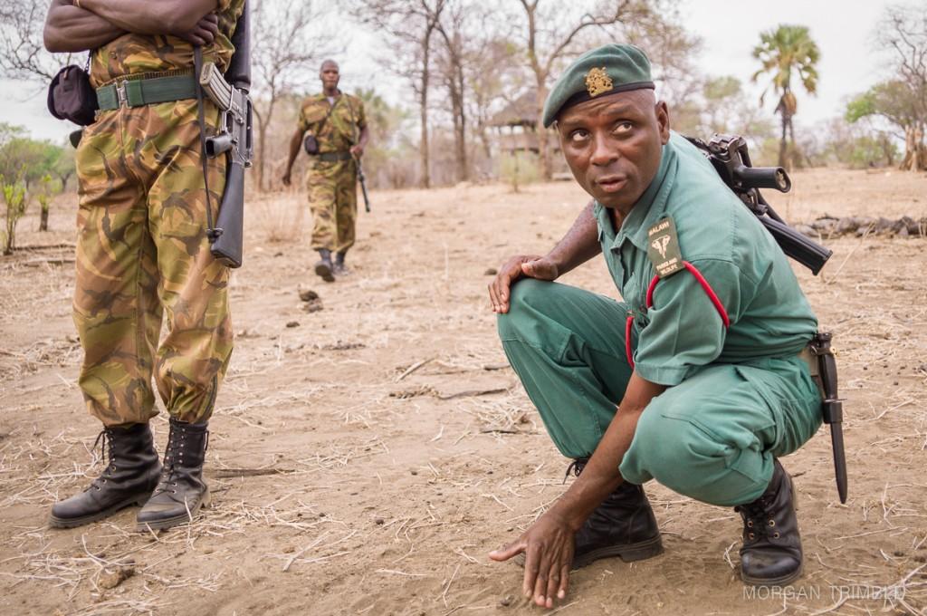 Tizola Moyo tracking in Majete Wildlife Reserve