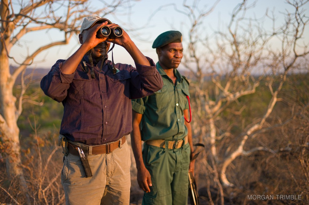 Jimmy Chikombe and game scout scan the horizon