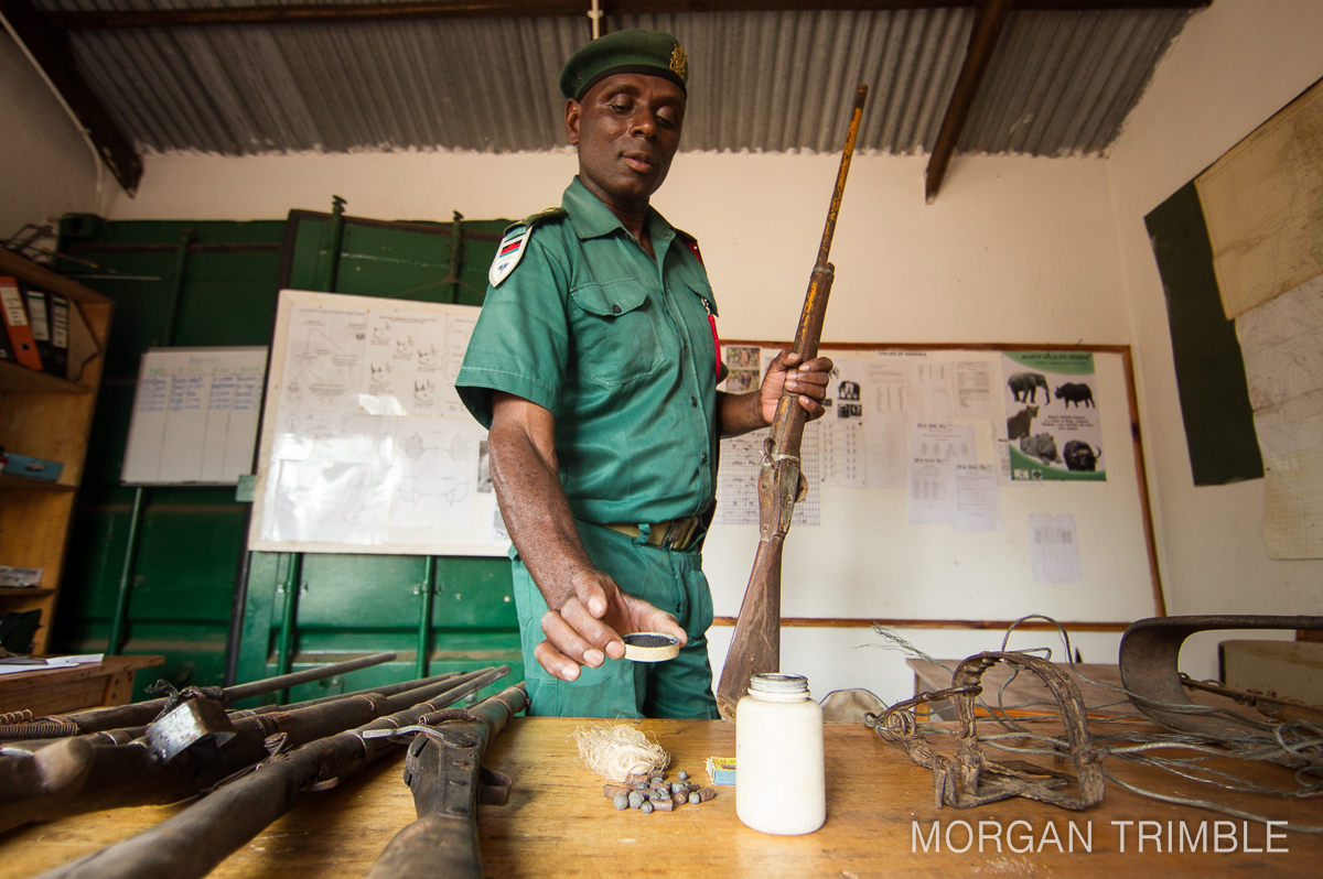 Moyo anti-poaching