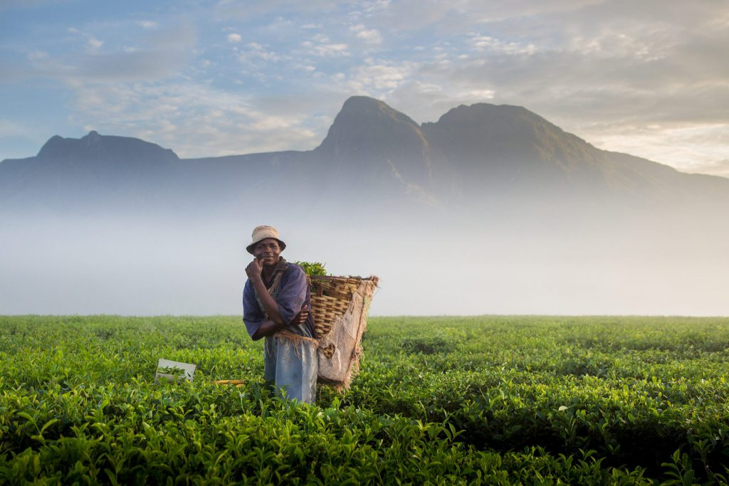 Sunday Times travel photographer of the month June