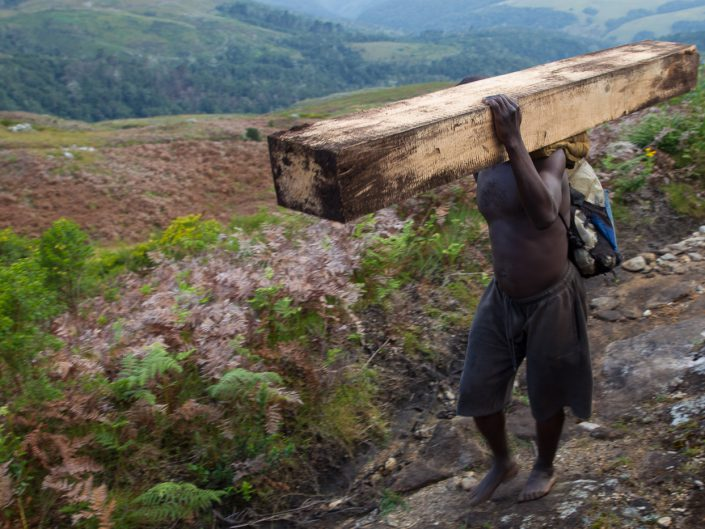 Desperate men work to haul the contraband timber off the mountain. They walk over treacherous terrain, usually barefoot, caring impossibly heavy loads for the equivalent of about $1.00 per day. Despite the illegality of their actions, many didn't mind being photographed.
