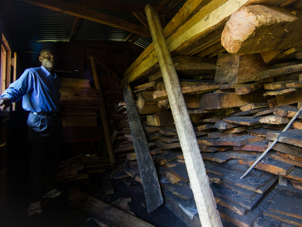 Enforcement from the Department of Forestry is extremely lax although they do occasionally confiscate contraband wood and store it at their offices. In the unlikely event that poachers are caught, the penalties are minimal.