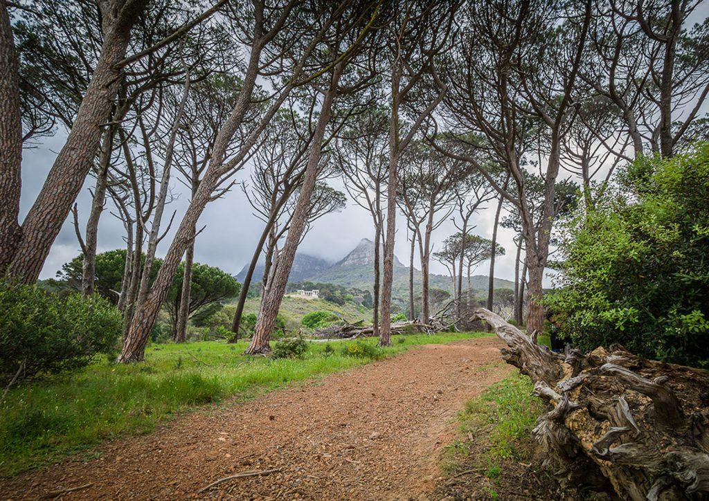 Rhodes Memorial, Devil's Peak, Table Mountain National Park, 2017