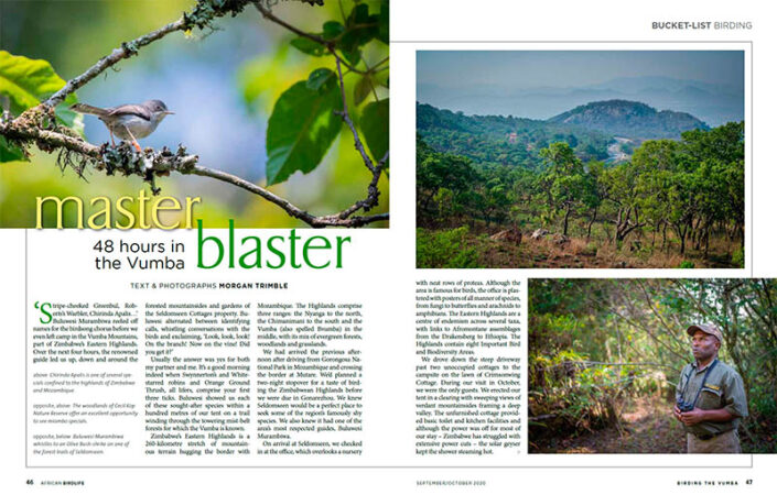 Master blaster: 48 hours in the Vumba