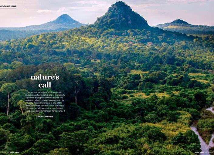 Nature's Call: Recovering Gorongosa National Park